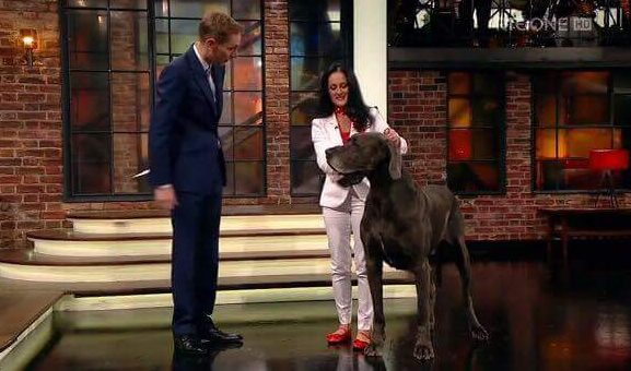 Michelle and Aramis with Ryan Tubridy on The Late Late Show